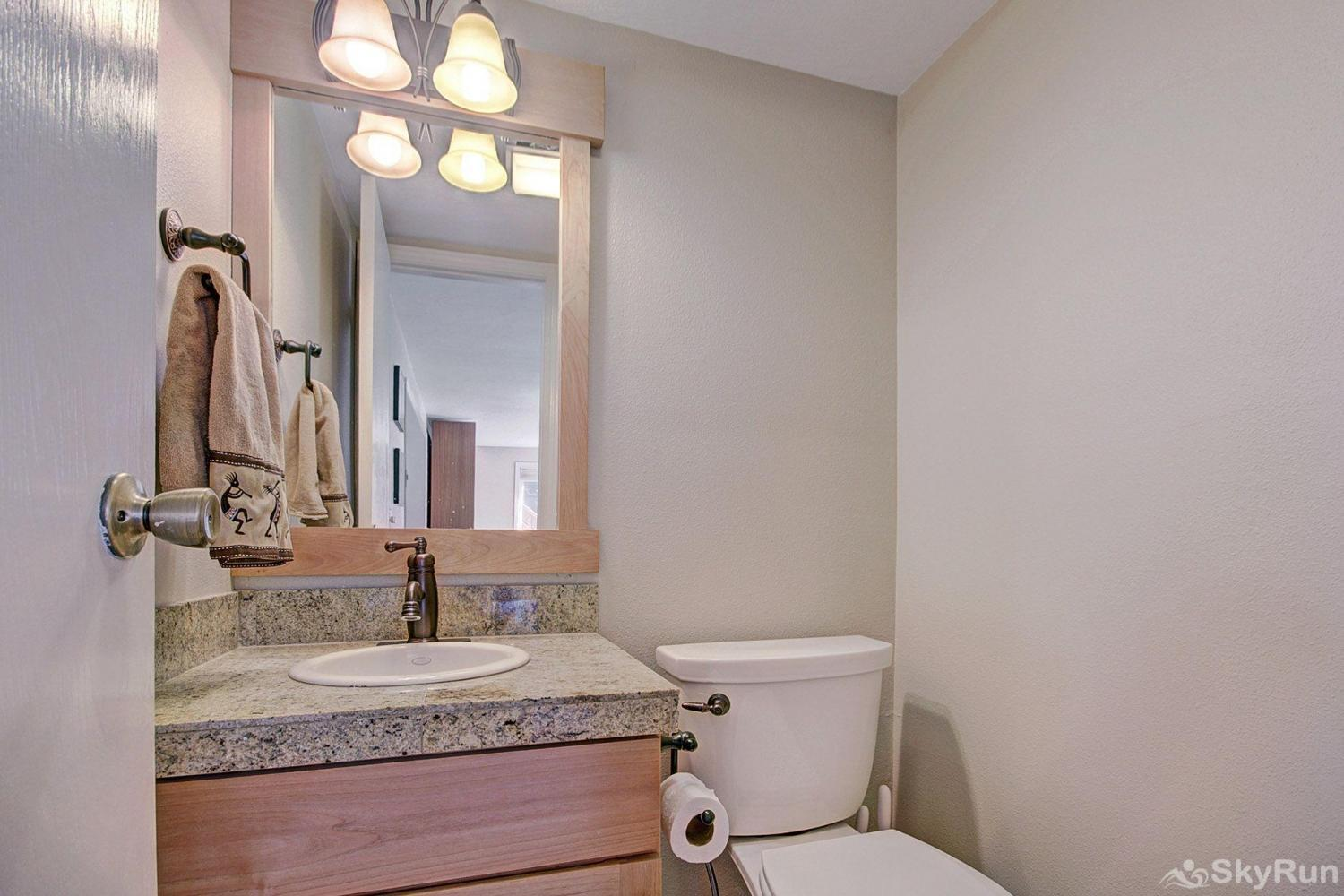 1250 Willow Grove Guest bathroom on main level