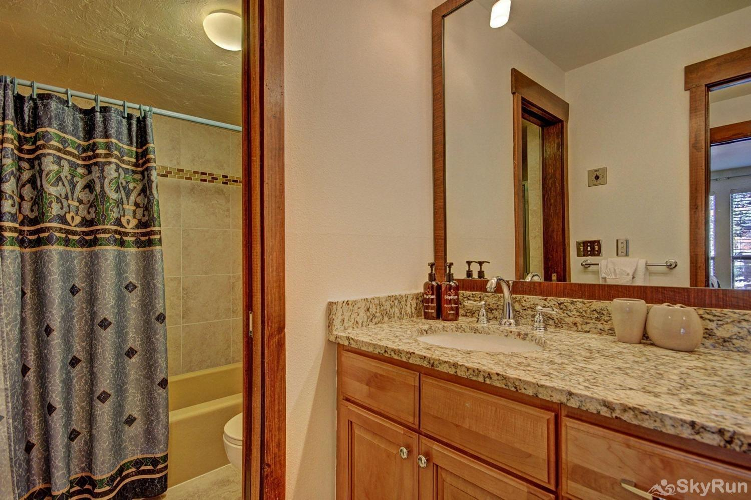 A208 Lake Cliffe Condos  2BR 2BA Updated master bathroom